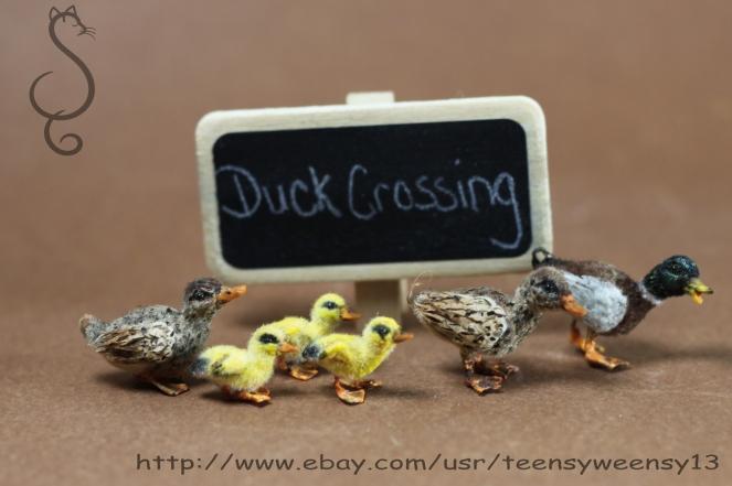 Duck Xing_Copy1.jpg