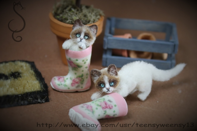 Garden Boots Paw