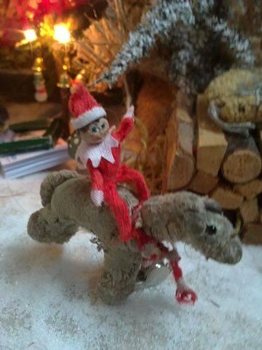 juliane-garstka-elf-riding-nasty-pony-2