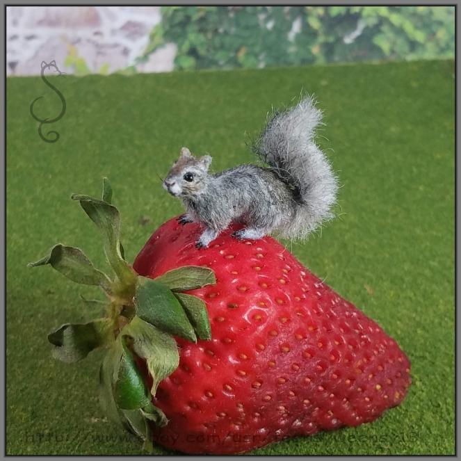 SquirrelGY